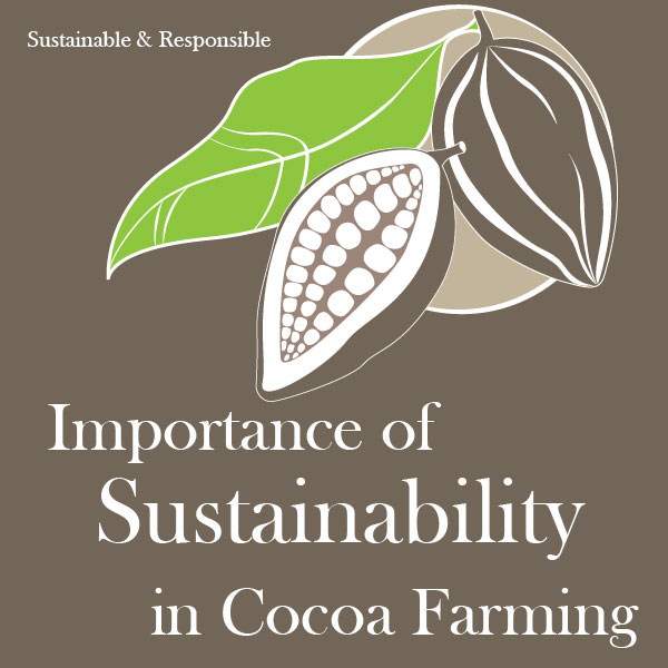 Importance of Sustainability in Cocoa Farming