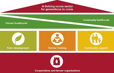 sustainable cocoa framework